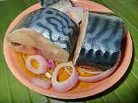 Скумбрия, соленая в домашних условиях - 6 очень вкусных рецептов засолки рыбы