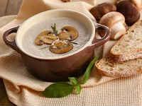 Суп-пюре из шампиньонов - вкусные рецепты грибного супа
