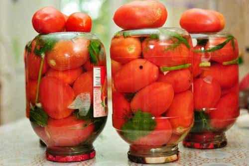 как мариновать помидоры с морковной ботвой