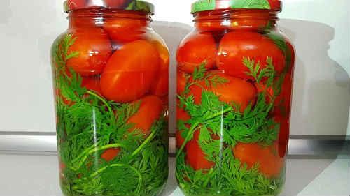 помидоры с морковной ботвой рецепты