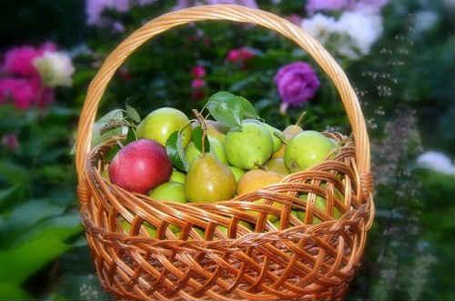 варенье из яблок и груш на зиму