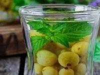 мохито из крыжовника на зиму рецепт