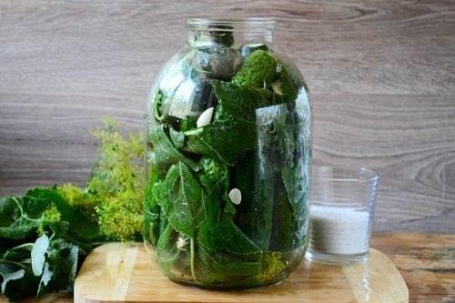 огурцы в листьях хрена на зиму рецепт
