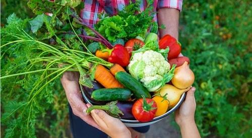 салат огород на зиму